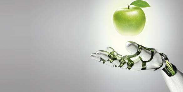 Aceites a la medida de las necesidades con envases especialmente adaptados a las exigencias de las industrias agroalimentarias.